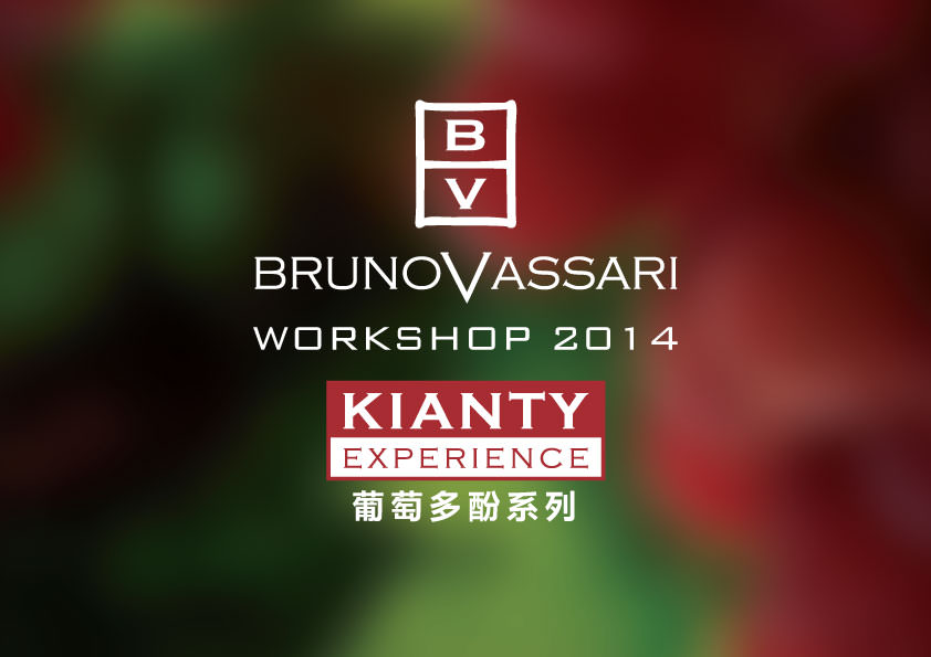 bv-2014-workshop-kianty-4